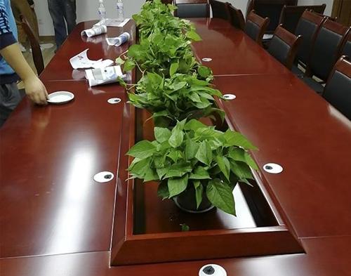 中建二局内江金科项目部会议室绿植租赁