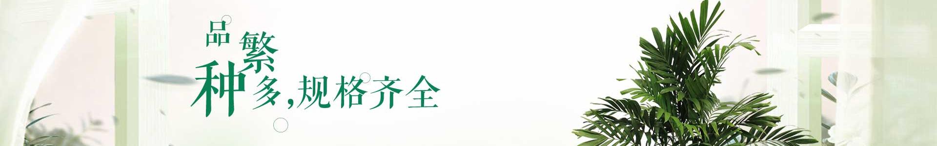 内江园林绿化