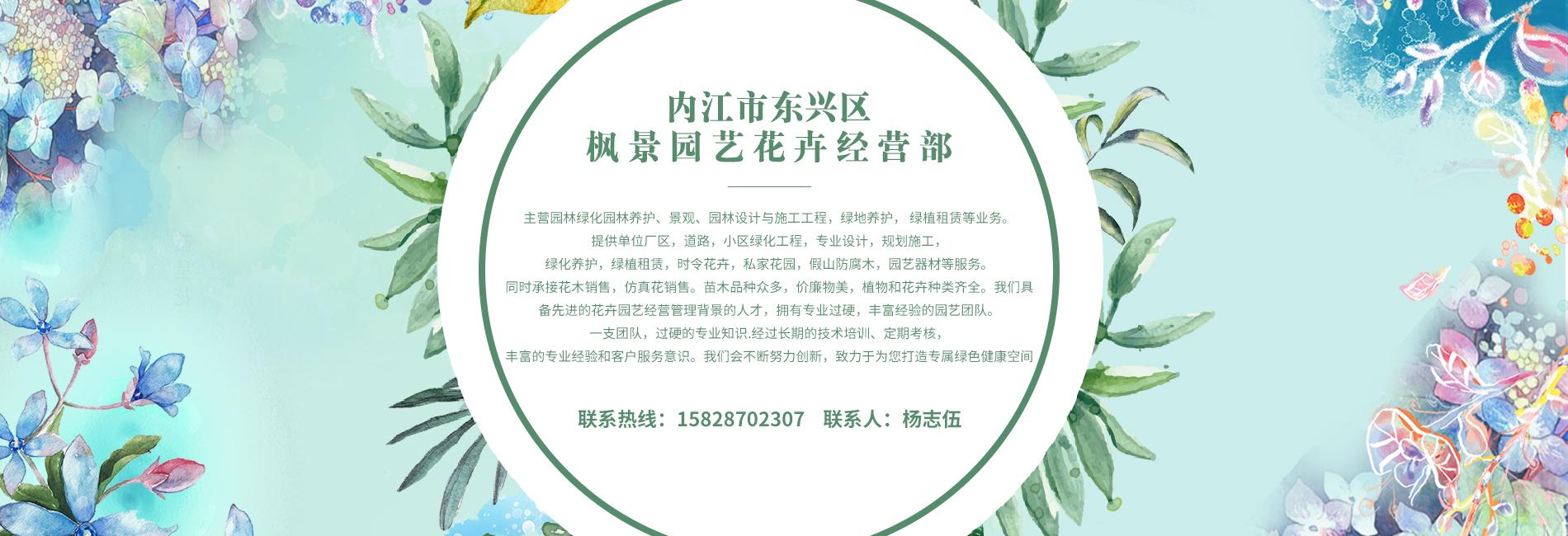 内江绿化苗木